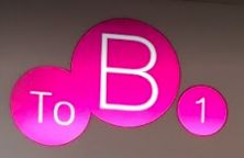 To B 1 Hair Station